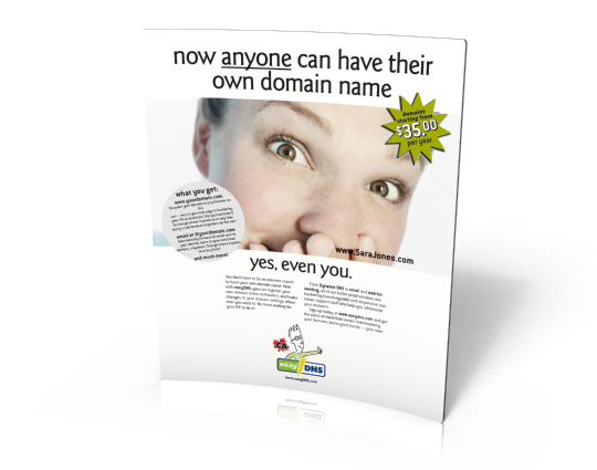 "B2C online service advertising: ""Anyone can"" campaign for easyDNS.com"